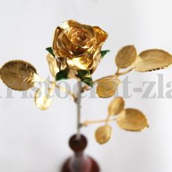 "Роза ""Подарочная"""
